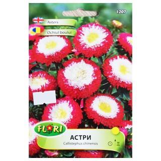 Семена Астри 1207 | Макадамия 05