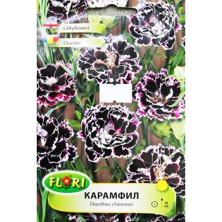 Цветя Карамфил 1297 | Макадамия 05