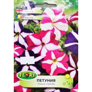 Цветя Петуния 1265 | Макадамия 05