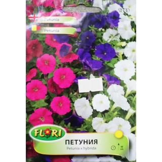 Цветя Петуния 1269 | Макадамия 05
