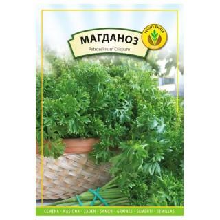 Семена магданоз Къдрав | Макадамия 05