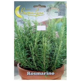 Семена Розмарин | Макадамия 05