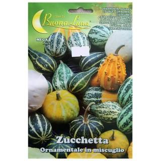 Семена Декоративна тиквичка | Макадамия 05