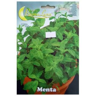 Семена Мента | Макадамия 05