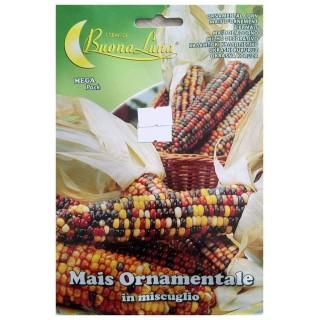 Семена Царевица декоративна | Макадамия 05