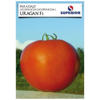 Семена домати Ураган | Макадамия 05