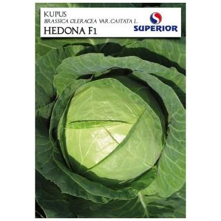 Семена Зеле Хедона F1 | Макадамия 05