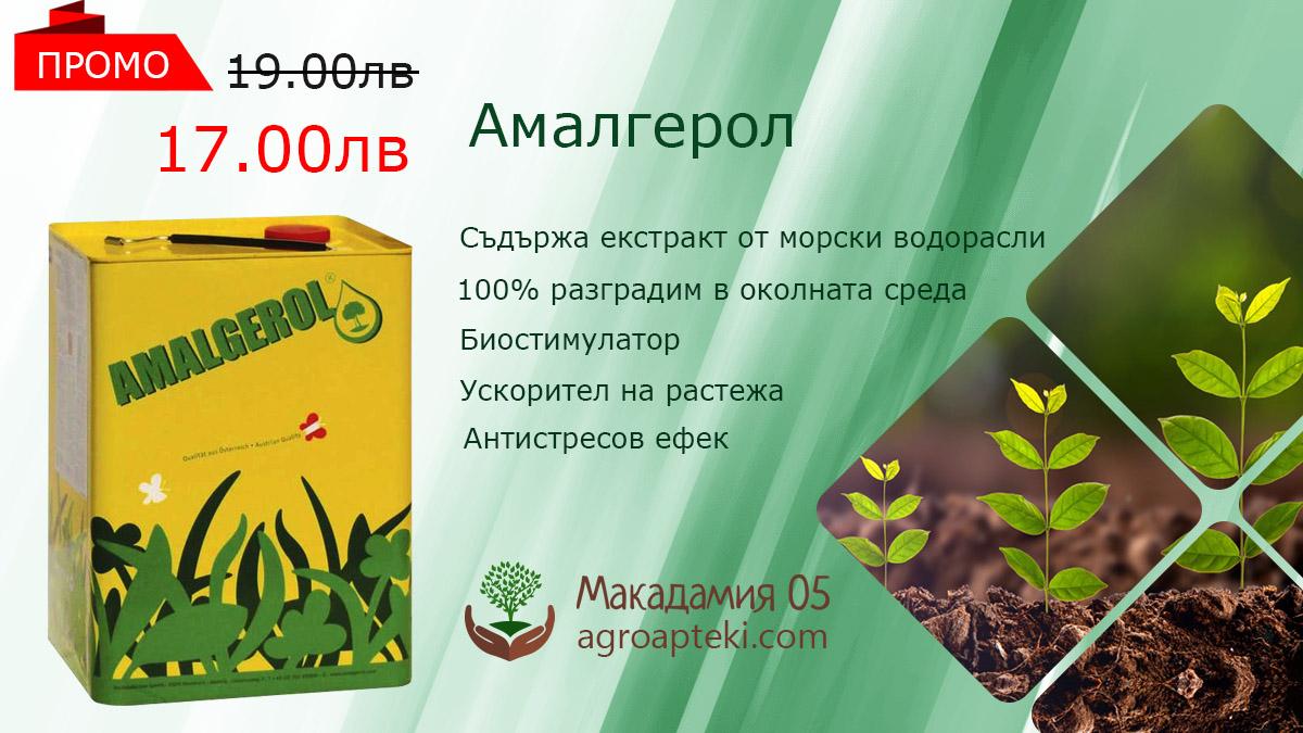 Амалгерол органичен тор за ускоряване растежа