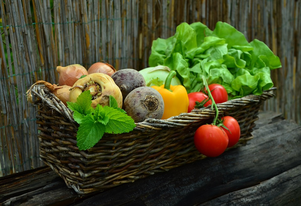 Торене на зеленчуци с Лактофол О основен
